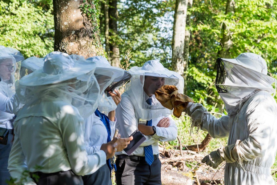 Små endringer som gjør en stor forskjell: César Ritz Colleges Switzerland blir Green Globe-sertifisert